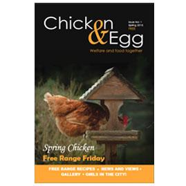 Chicken & Egg Issue 1