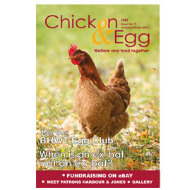 Chicken & Egg Issue 9