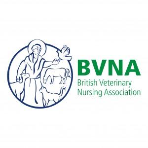 BVNA Logo-01