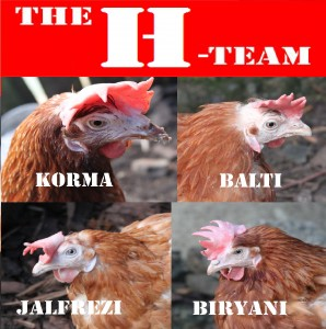 the-h-team