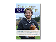 Chicken and Egg front page PDF small