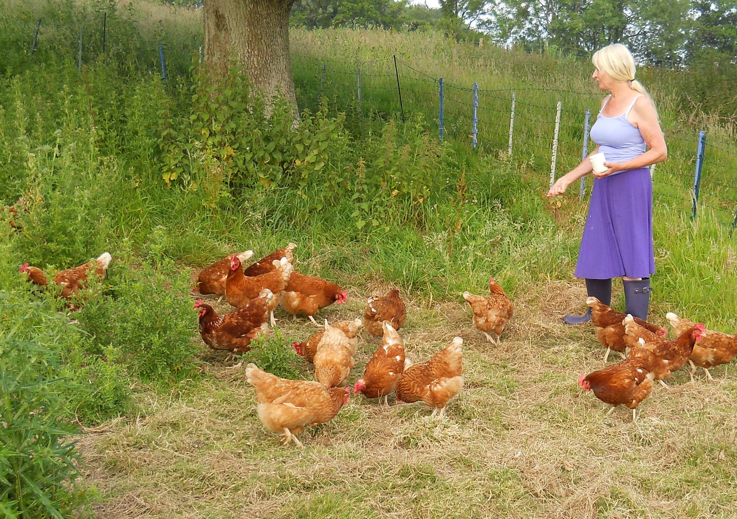 Carol Pickering with her hens