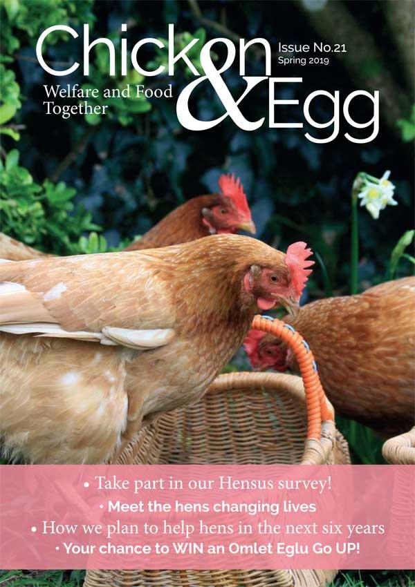Chicken & Egg issue 21