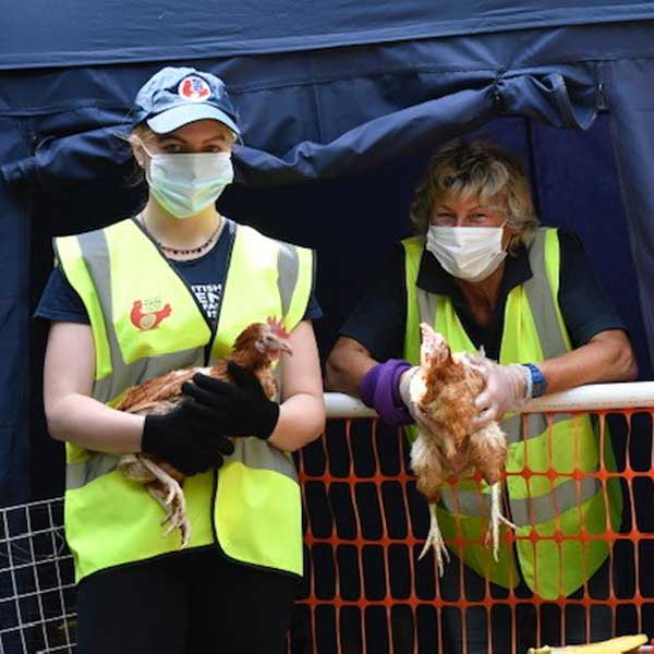Rehoming Volunteers With Face Masks