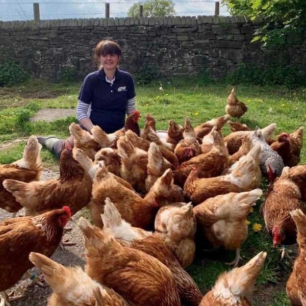 Bernard's Farm Sarah Clulow