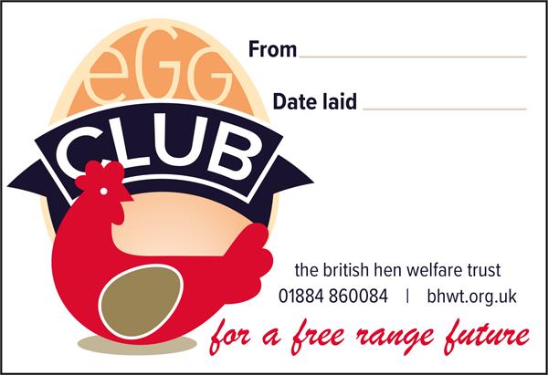 Egg Club Label Design 2