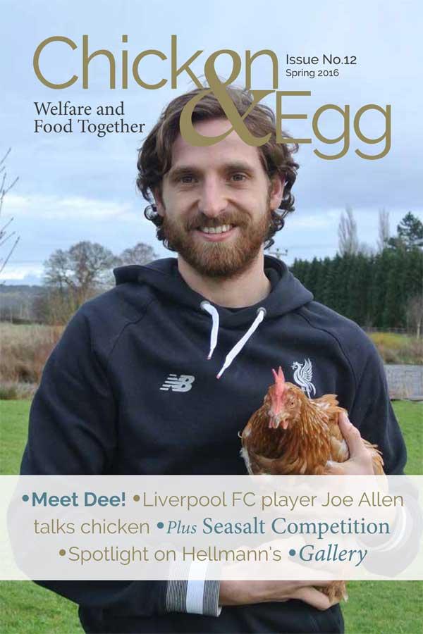 Chicken & Egg 12 Cover