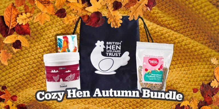 cozy hen autumn bundle 600x600