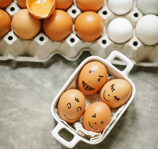 Egg-Club-Intro-Image