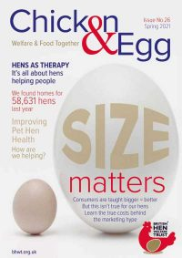 Chicken & Egg Magazine Issue 26 Cover
