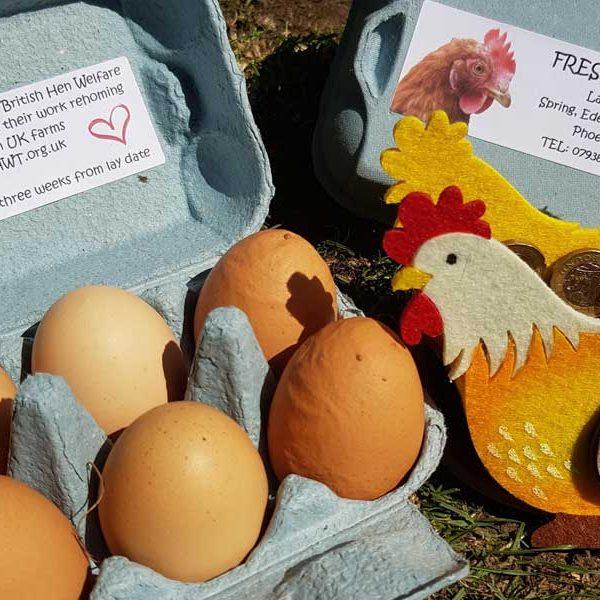 Egg Club Jade Hughes